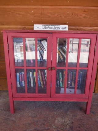 These little free libraries / book swaps are also awesome!