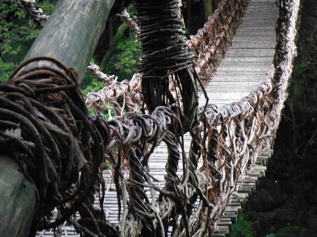 Amazing vine bridge.